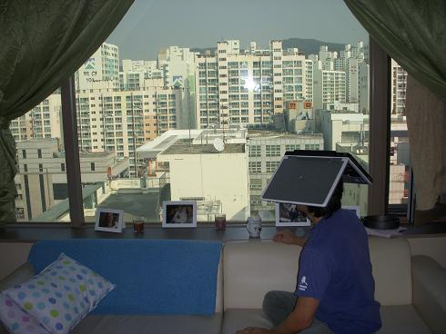 Image is of Tauru sitting on a sofa looking out the window.  On top of his head is a laptop.