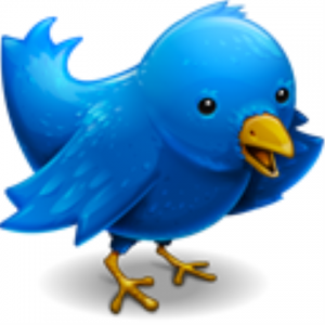 Image is a cartoon of a bird.  The color is blue, which is Twitter's corporate color.